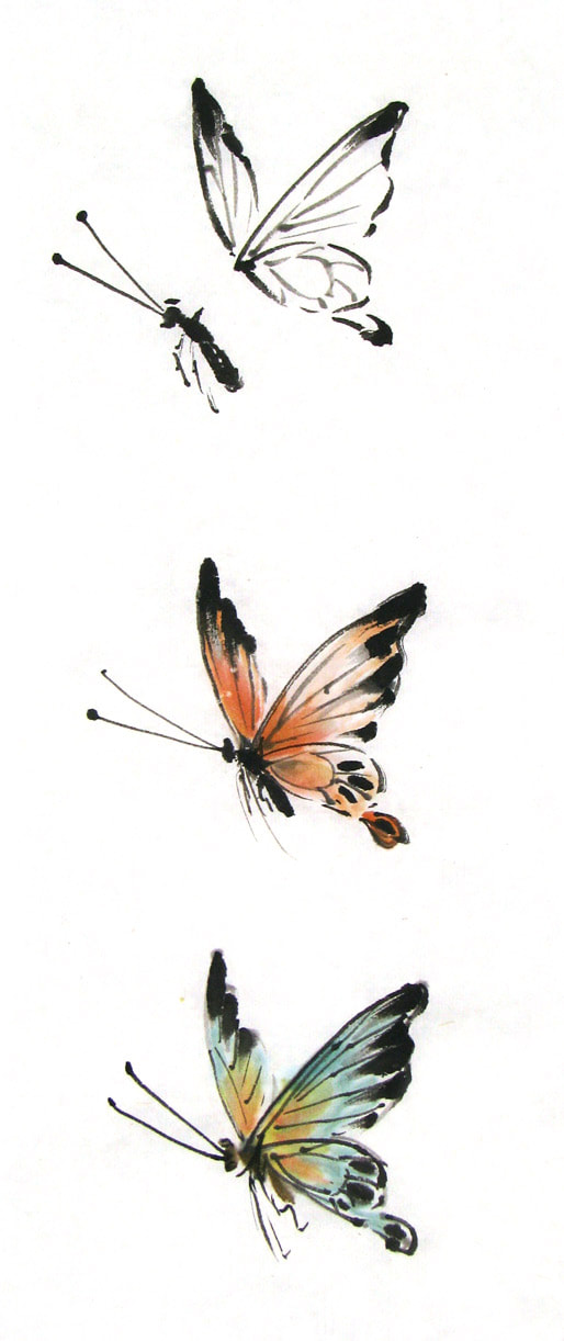 butterfly in black ink and color Picture