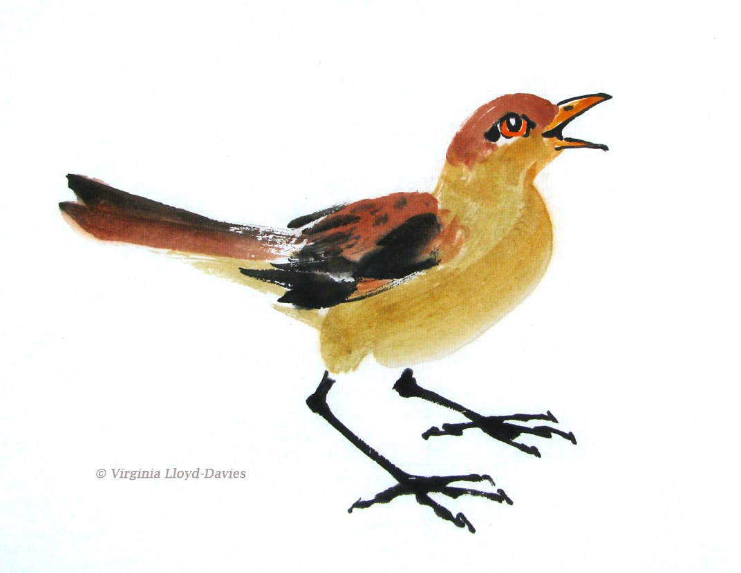 Brown and yellow bird painting