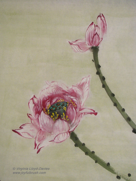 Chinese brush painting of outlined lotus flowers